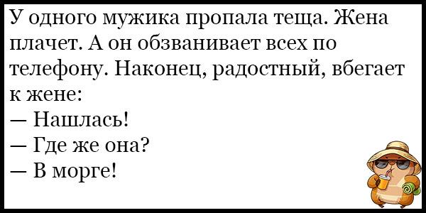 Самые смешные и веселые анекдоты про тещу - подборка №131 12