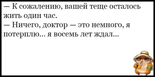 Самые смешные и веселые анекдоты про тещу - подборка №131 7