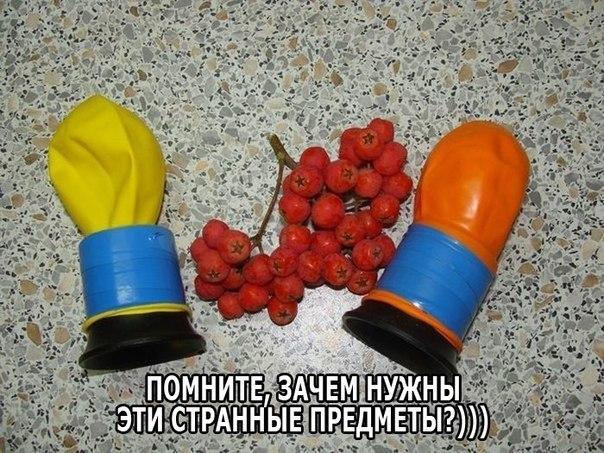 Смешные и веселые картинки, фото с текстом до слез - подборка №102 16