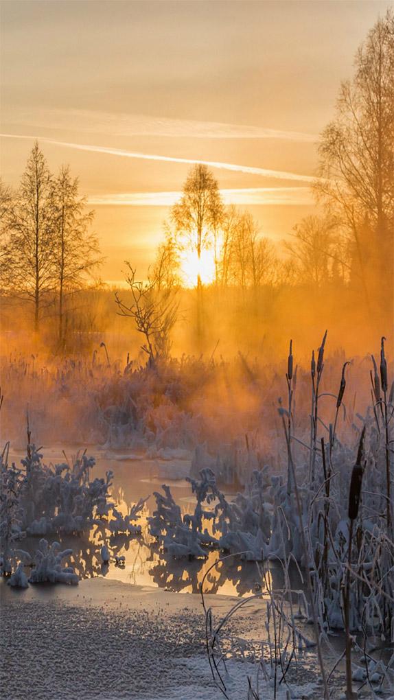 Удивительные картинки на заставку телефона Зима - подборка 12