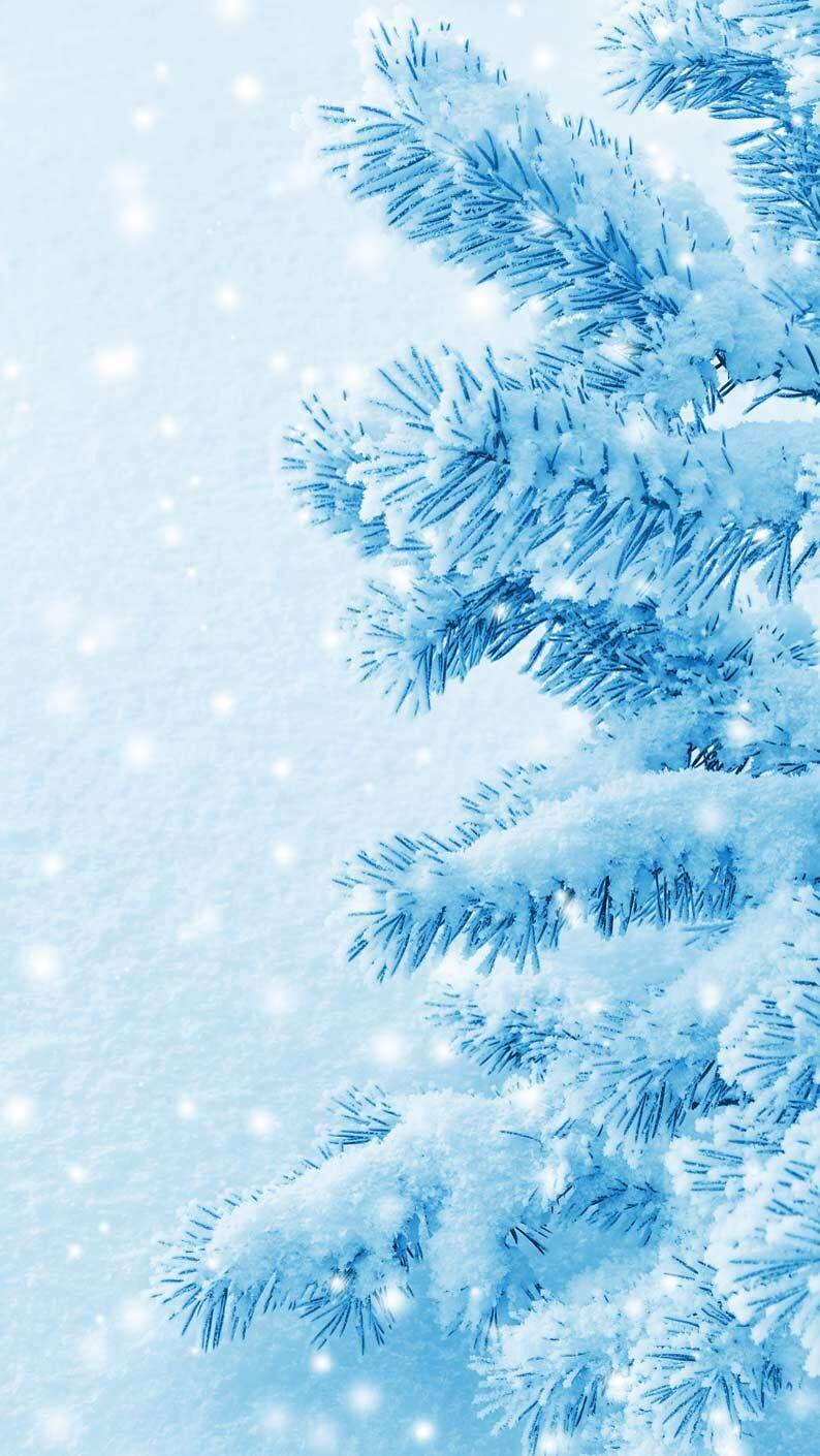 Удивительные картинки на заставку телефона Зима - подборка 18