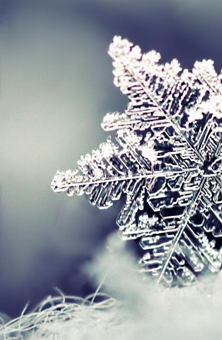 Удивительные картинки на заставку телефона Зима - подборка 2