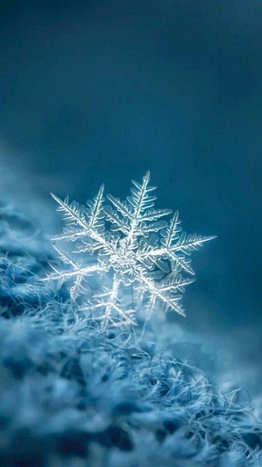 Удивительные картинки на заставку телефона Зима - подборка 5