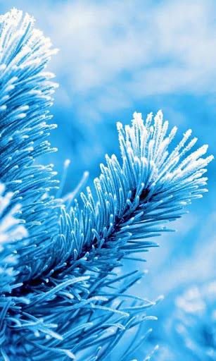 Удивительные картинки на заставку телефона Зима - подборка 7