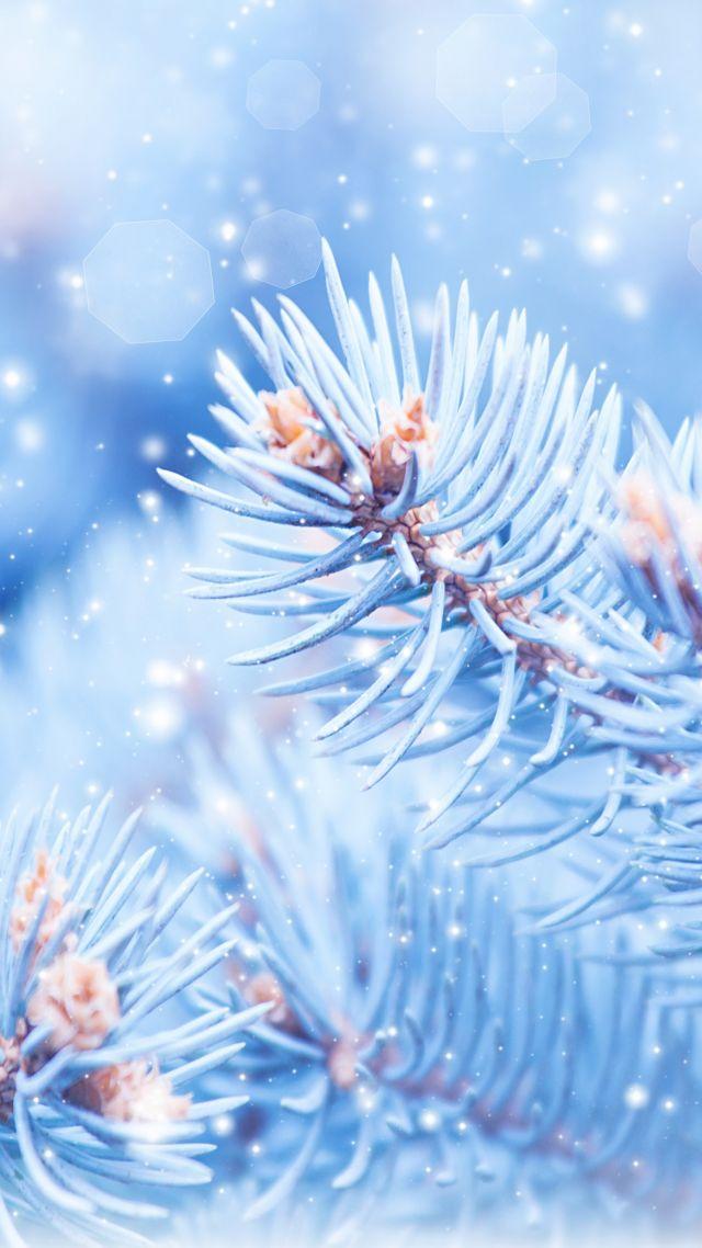 Удивительные картинки на заставку телефона Зима - подборка 9