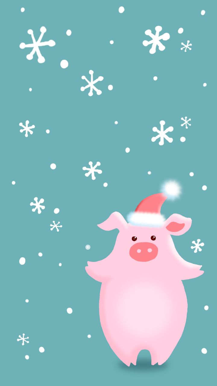 Интересные и прикольные картинки, фото свиньи на Новый год 2019 17