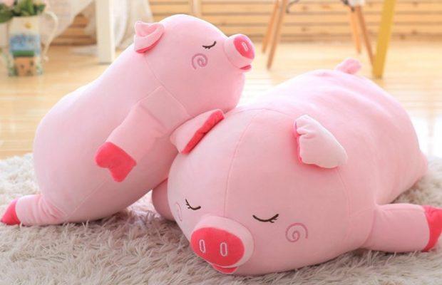 Интересные и прикольные картинки, фото свиньи на Новый год 2019 3