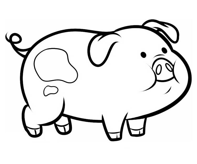 Интересные и прикольные картинки, фото свиньи на Новый год 2019 4