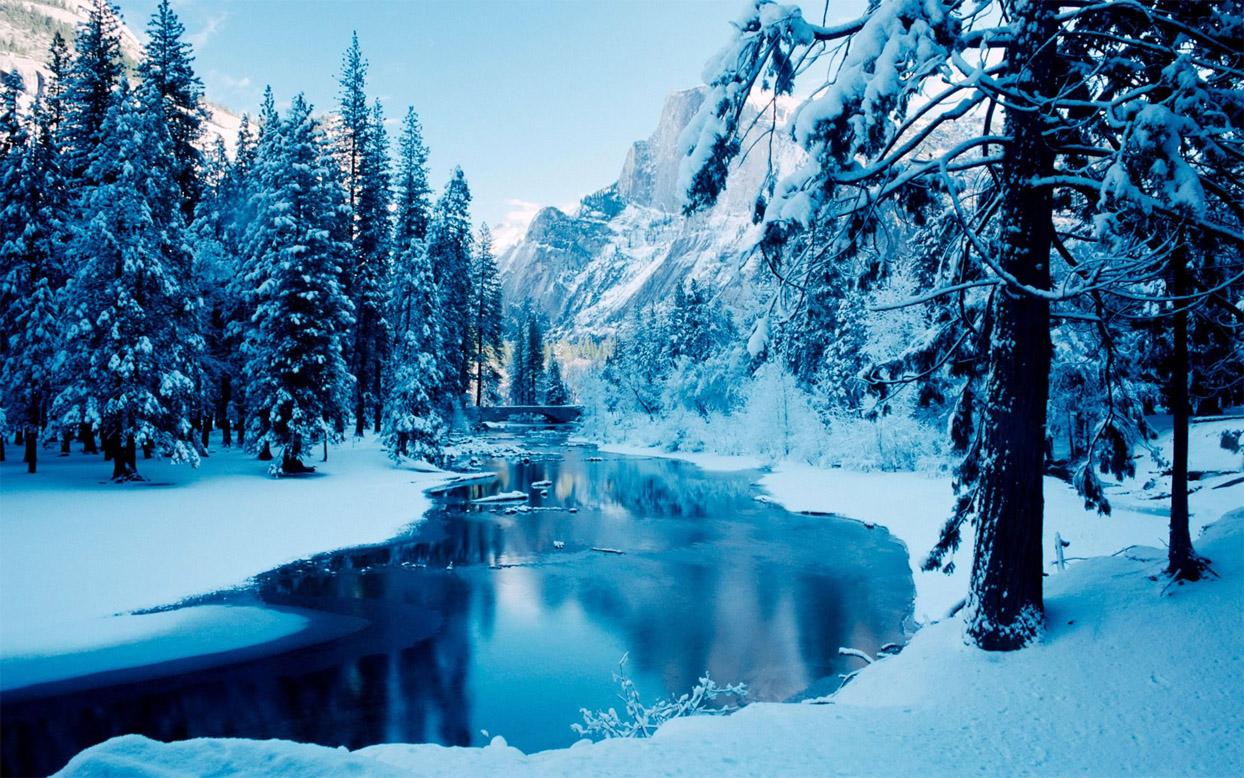 Картинки про новый год и зиму - самые удивительные и красивые 5