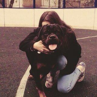 Классные картинки девушек с собаками на аву - подборка 8