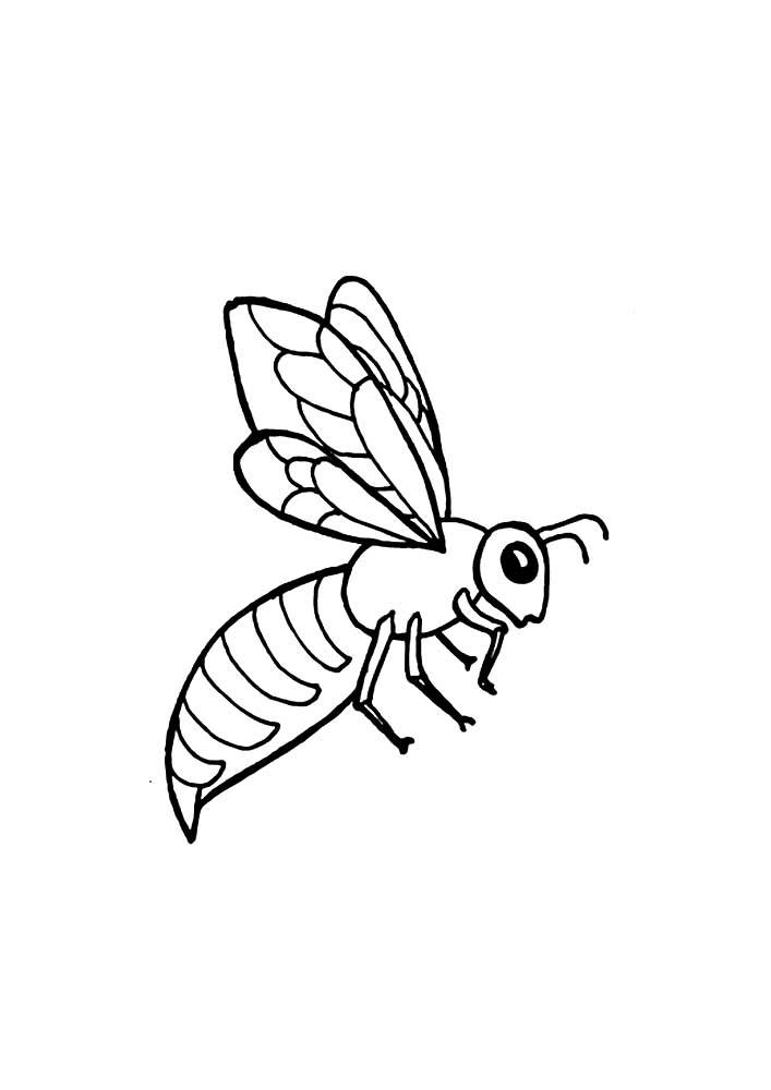 Красивые и прикольные картинки, рисунки осы для детей 11