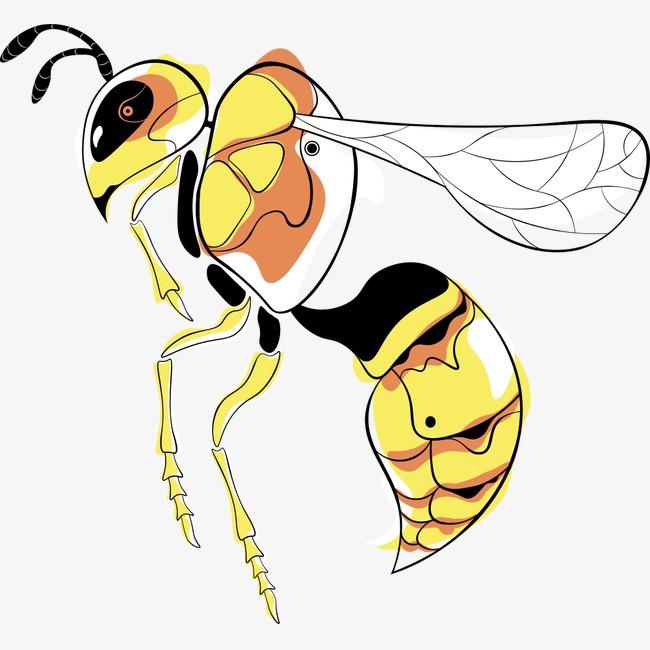 Красивые и прикольные картинки, рисунки осы для детей 13