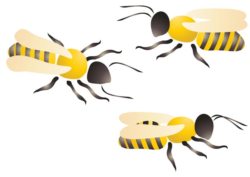 Красивые и прикольные картинки, рисунки осы для детей 4