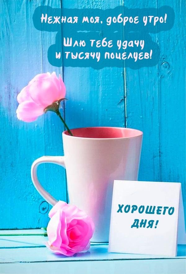 Красивые картинки девушке Доброе утро - подборка 2019 11