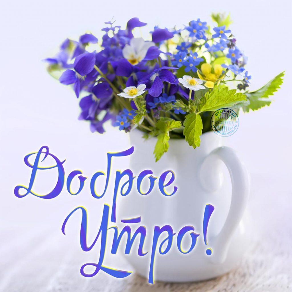 Красивые картинки девушке Доброе утро - подборка 2019 6