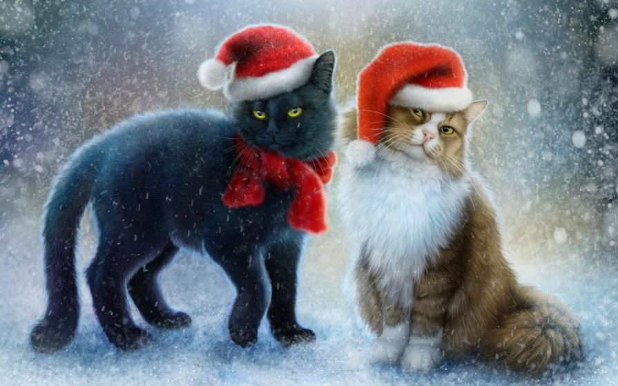 Красивые картинки котиков и кошек зимой в снег и Новый год 12
