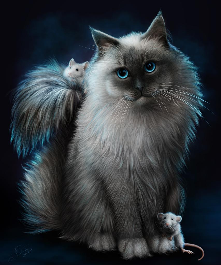 Красивые картинки на телефона на заставку кошки и котики - подборка 9