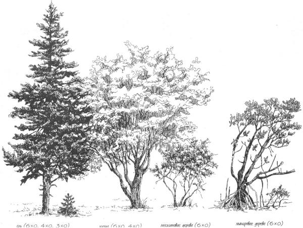 Красивые картинки с деревьями для детей и малышей - подборка 20 фото 1