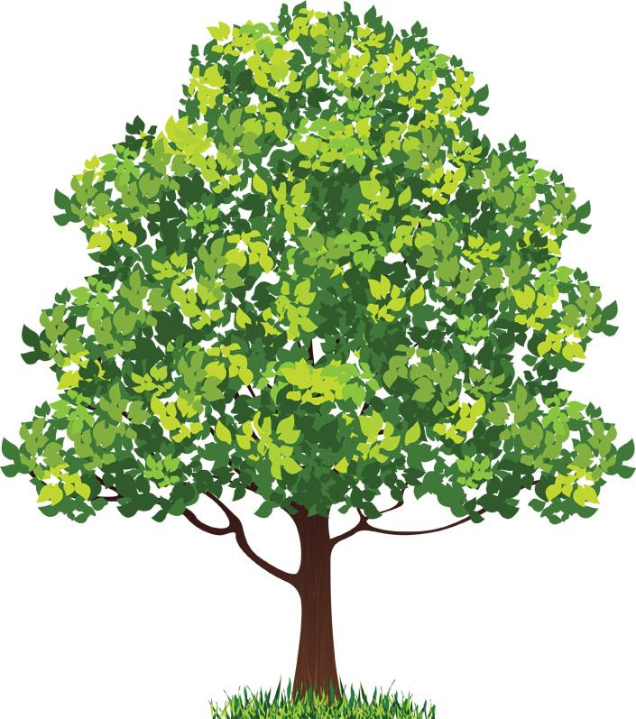 Красивые картинки с деревьями для детей и малышей - подборка 20 фото 12