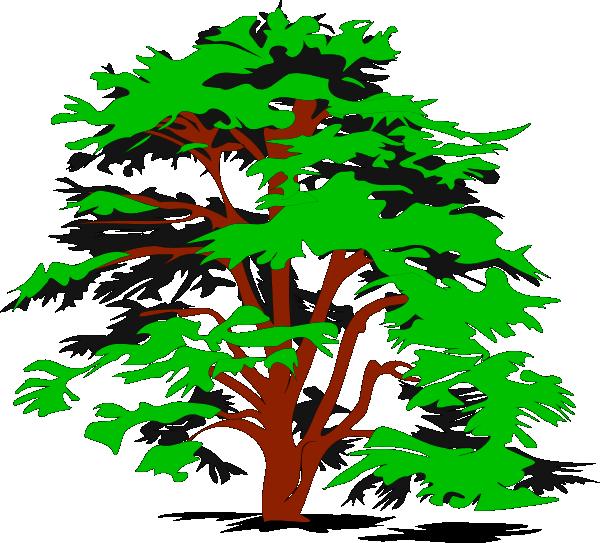 Красивые картинки с деревьями для детей и малышей - подборка 20 фото 17