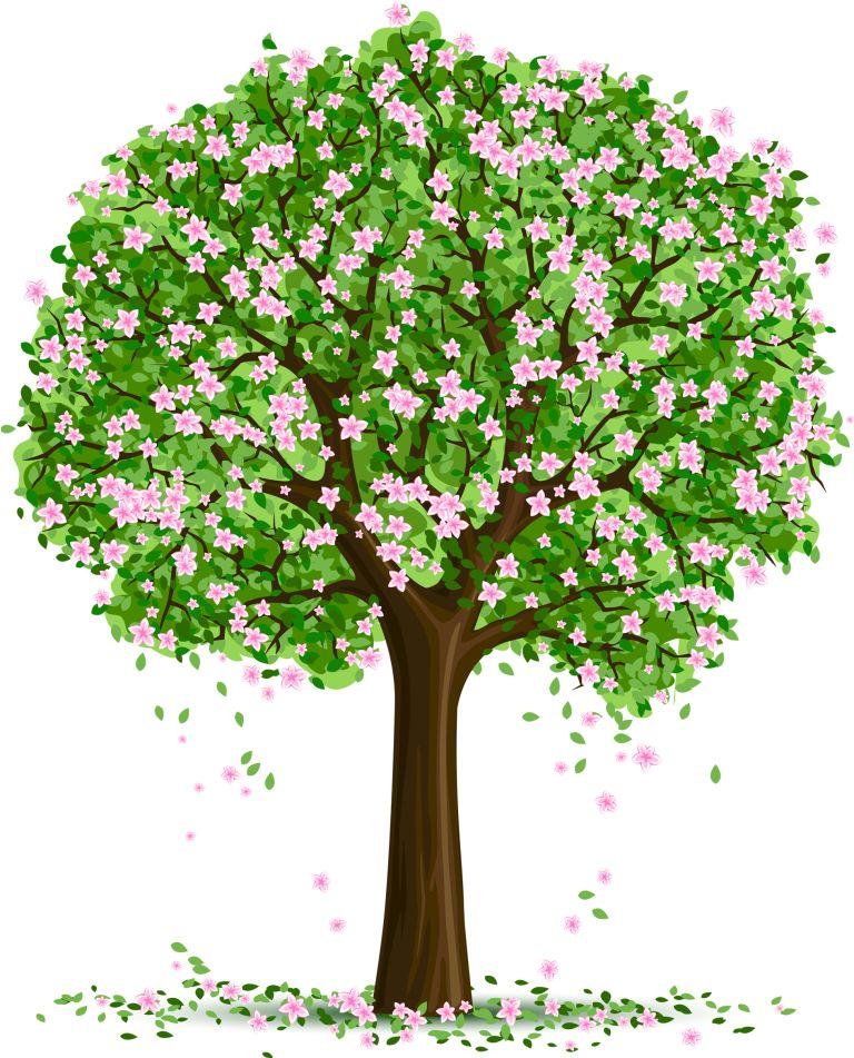 Красивые картинки с деревьями для детей и малышей - подборка 20 фото 3
