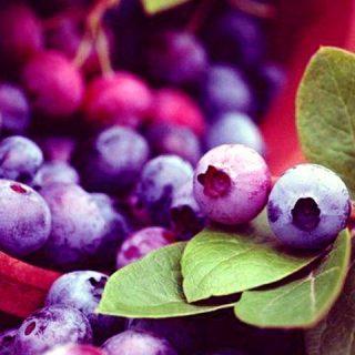 Красивые картинки фруктов для заставки телефона - подборка 18