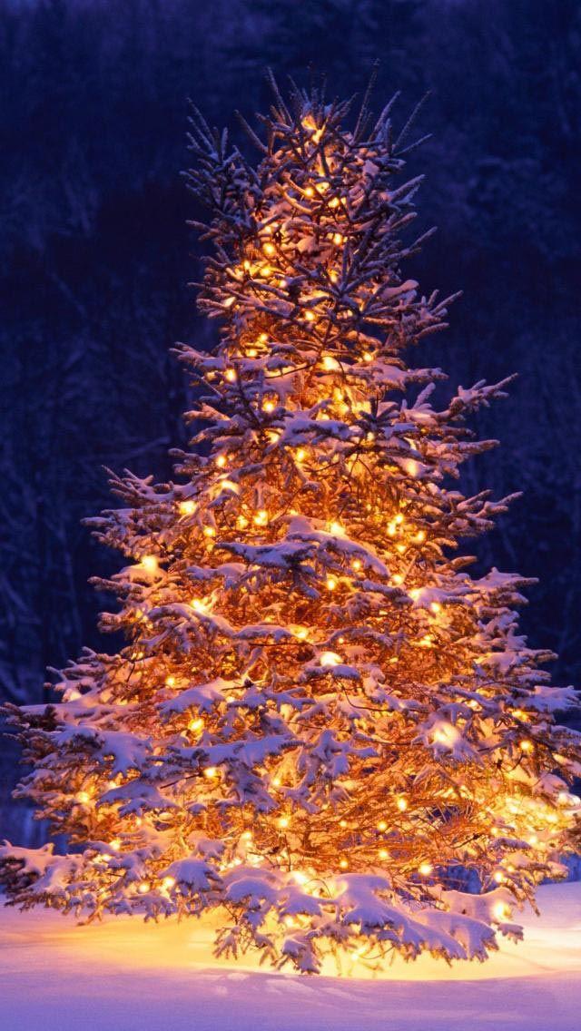 Красивые новогодние и рождественские картинки на телефон 9