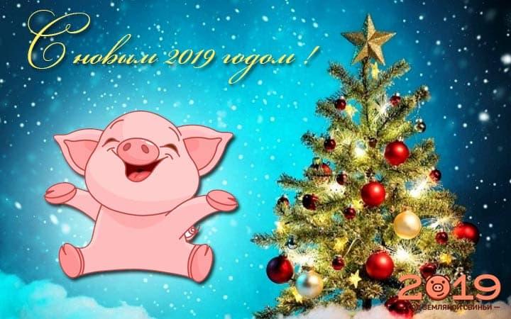 Новогодние открытки 2019 с изображением свиньи - поздравления 2