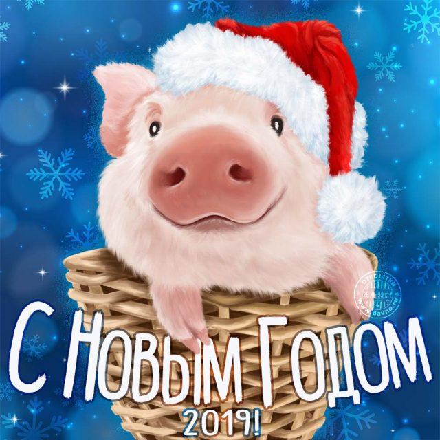 Новогодние открытки 2019 с изображением свиньи - поздравления 7