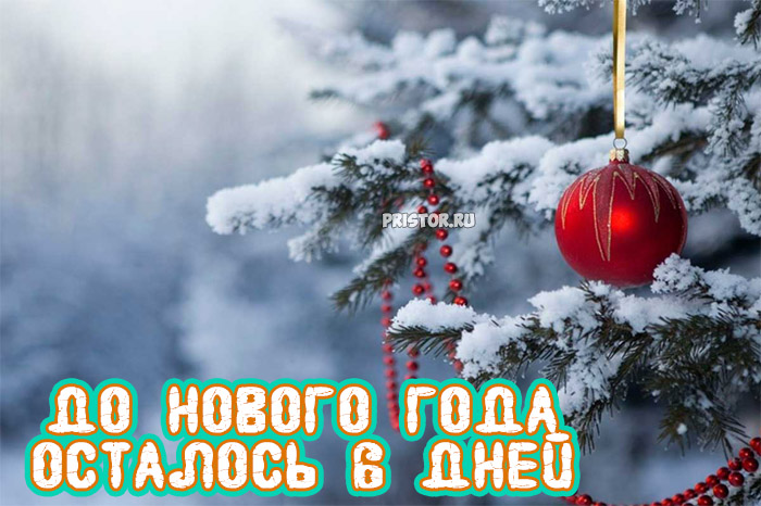 Прикольные картинки До нового года осталось 6 дней - подборка 12