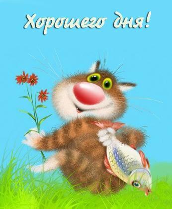 Прикольные открытки, картинки пожелания хорошего дня - сборка 10