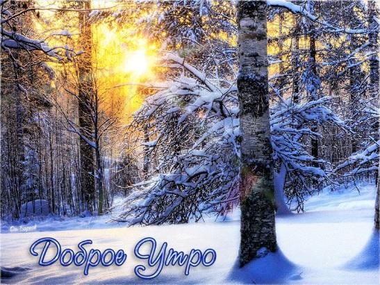 Самые красивые зимние картинки С Добрым Утром и Хорошего Дня 4