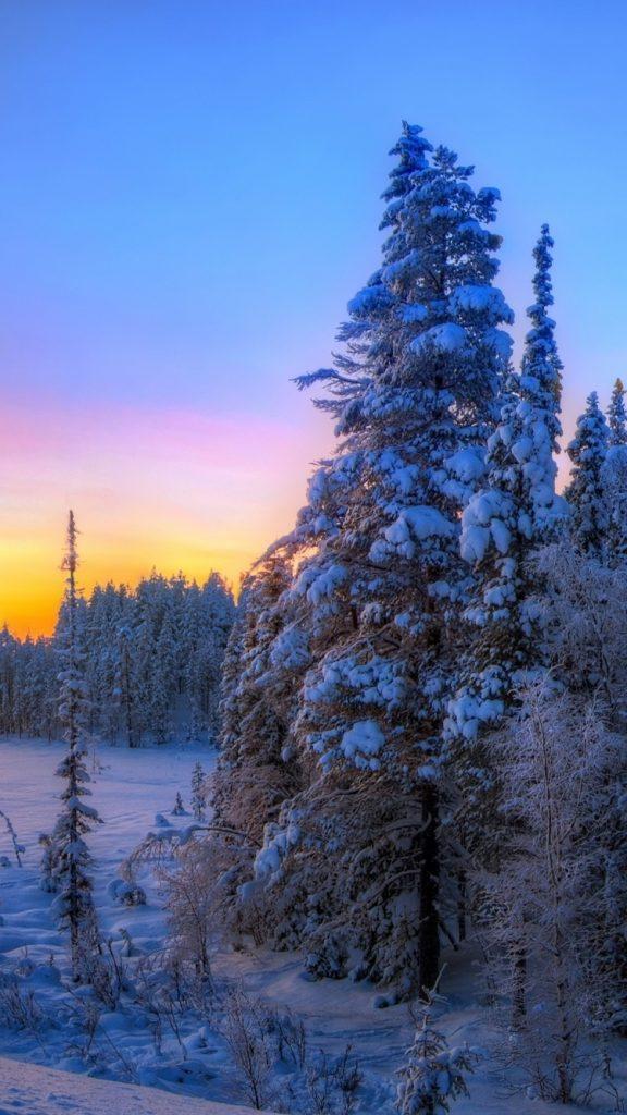 Самые лучшие и топовые зимние заставки на телефон - подборка 7