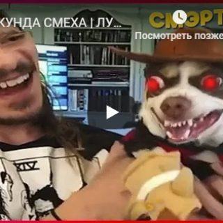 Самые ржачные видео приколы за зиму 2018 год - сборка №153