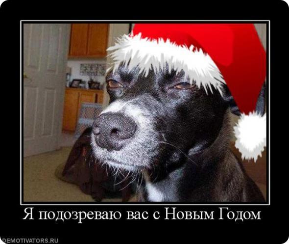 Смешные демотиваторы про Новый год до слез - подборка №52 9