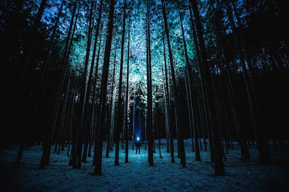 Зимняя ночь картинки красивые и удивительные - подборка 20 фото 14