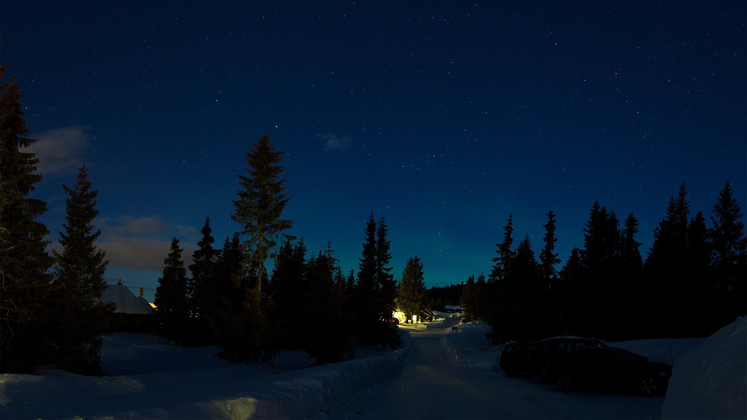 Зимняя ночь картинки красивые и удивительные - подборка 20 фото 16