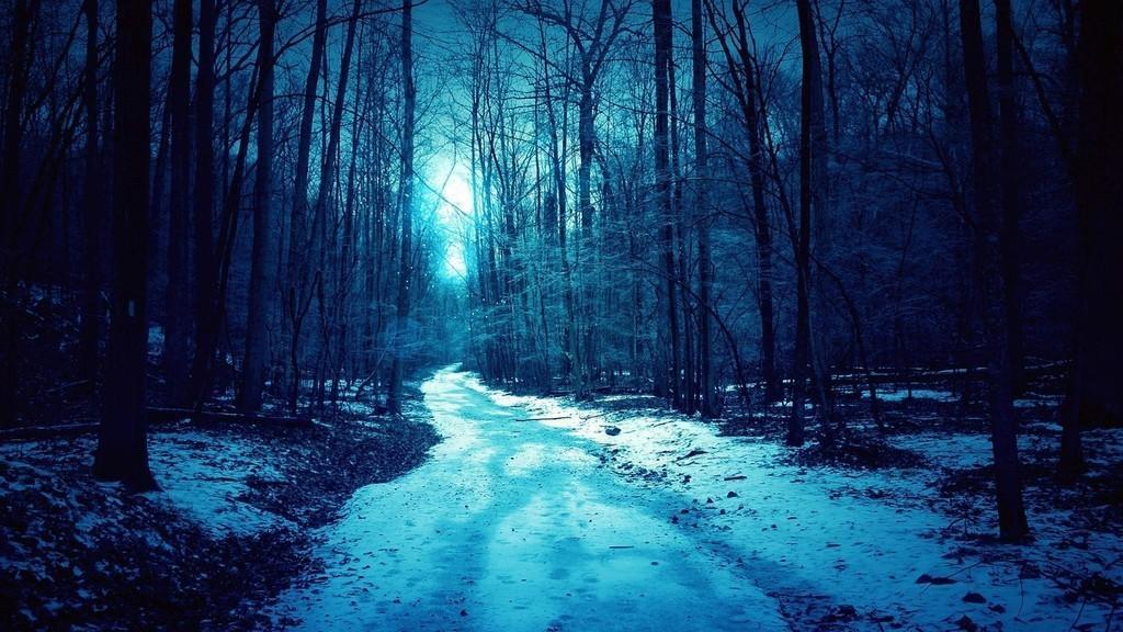 Зимняя ночь картинки красивые и удивительные - подборка 20 фото 18