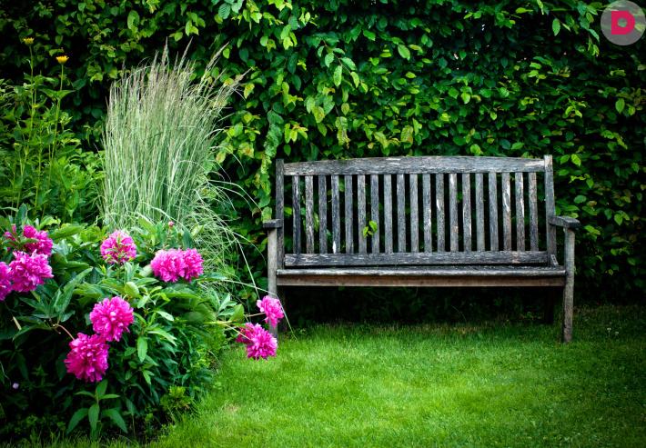 Картинки и фотографии красивого сада, удивительное оформление 5