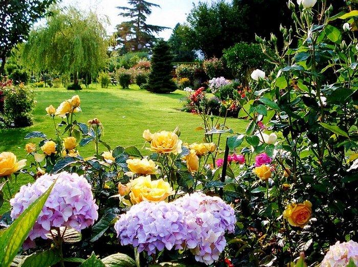 Картинки и фотографии красивого сада, удивительное оформление 7