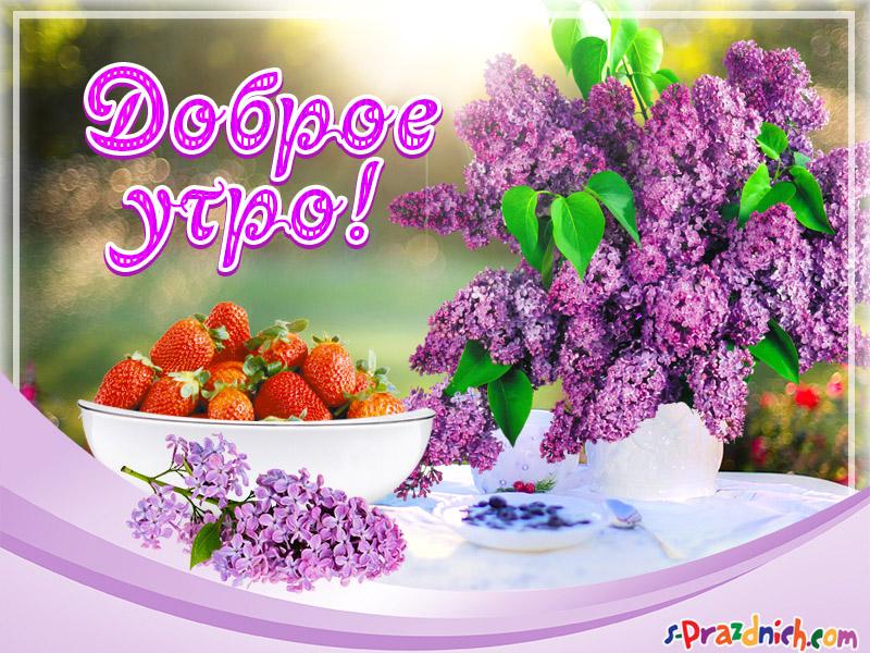 Красивые картинки С добрым утром, весна - приятные открытки 11