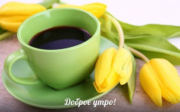 Красивые картинки С добрым утром, весна - приятные открытки 5