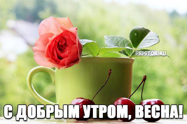 Красивые картинки С добрым утром, весна - приятные открытки 6