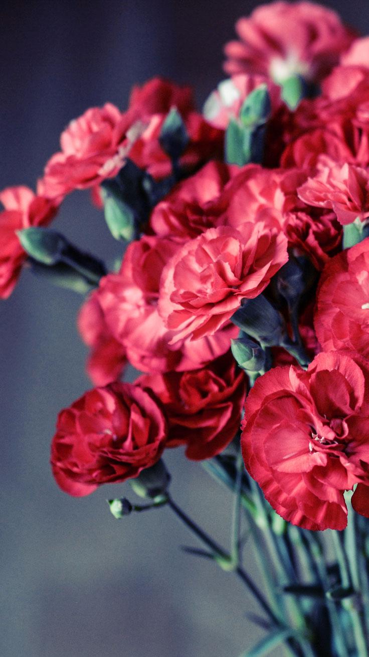 Красивые картинки на телефон цветы на главный экран - подборка 7