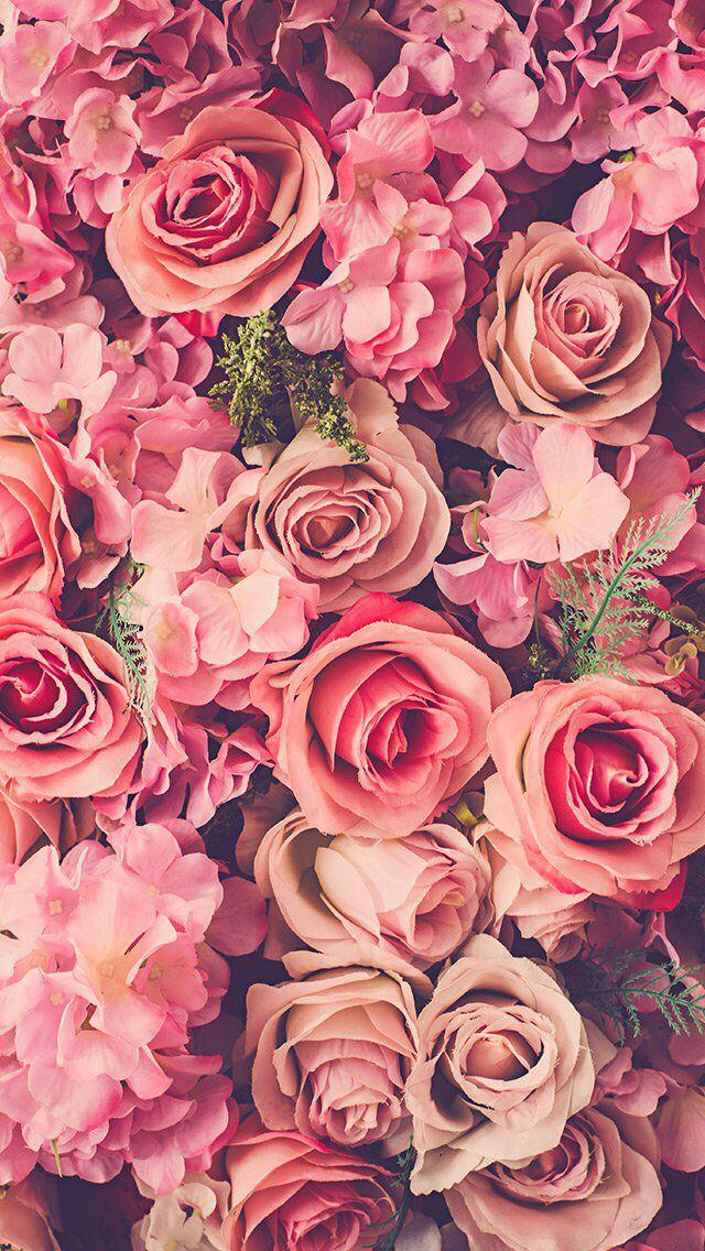 Красивые картинки на телефон цветы на главный экран - подборка 8
