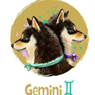 Красивые картинки, фото, арты Близнецы, Gemini - подборка 1