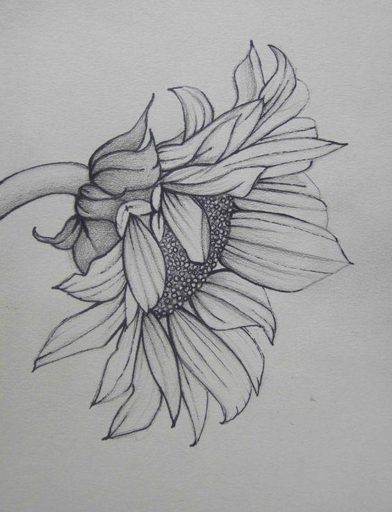 Красивые рисунки простым карандашом - срисовки, картинки 23