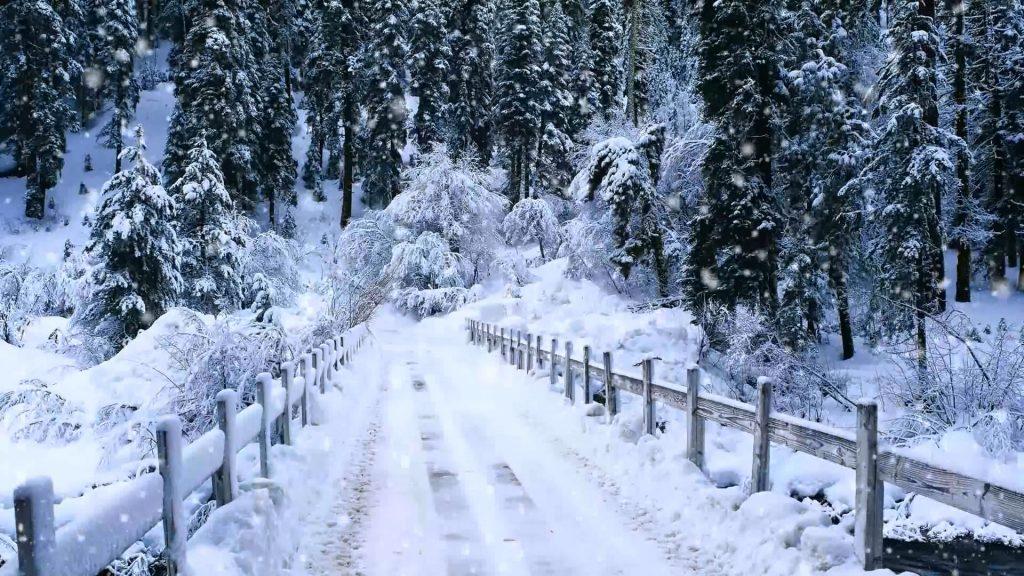 Падающий снег - красивые картинки и обои на рабочий стол 4