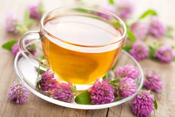 Польза цветочных чаев липовый цвет, ромашка аптечная, красный клевер 3