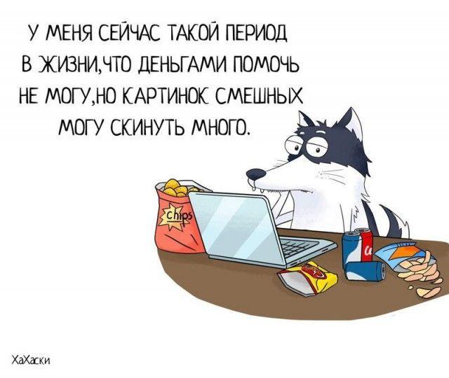 Прикольные и смешные комиксы из жизни Хаски Карла - подборка 32 картинки 17
